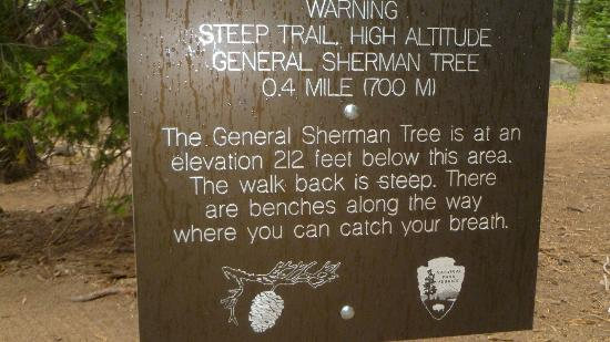 Lodgepole Campground: General Sherman