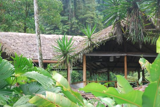 Pacuare Lodge: The main lodge and dining area