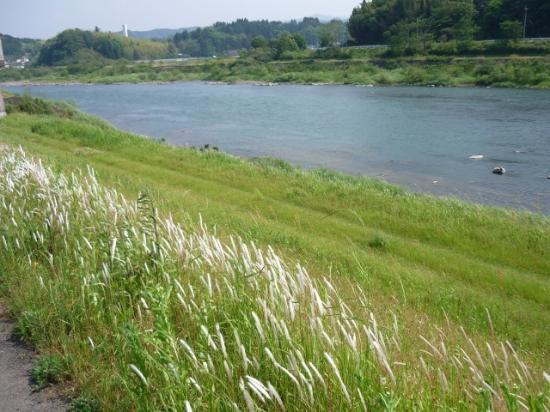 Suiranrou : 球磨川の土手でウォーキングしましょう。
