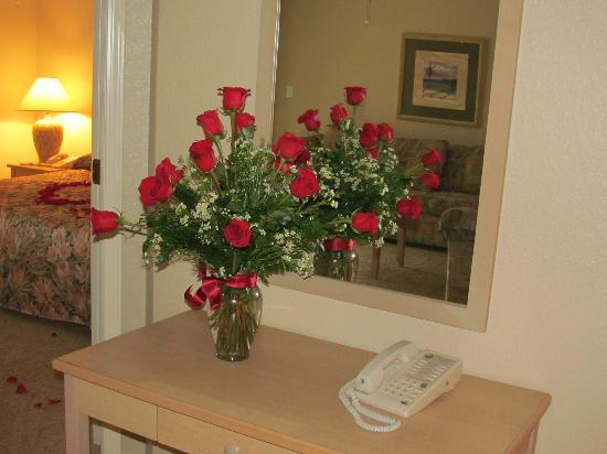 Still Waters Resort: beautiful roses awaited us upon our arrival