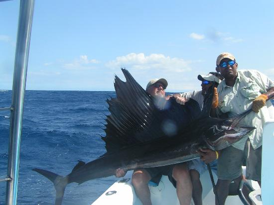 grandsons first sailfish - カララ、Vic ...