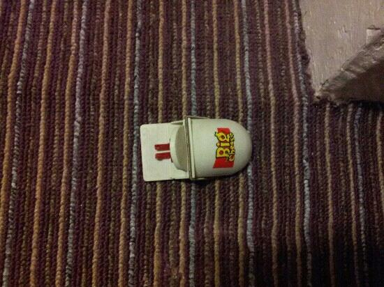 St. Athans Hotel: mouse trap