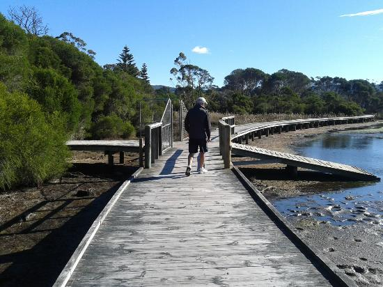 Garden of Eden Caravan Park: Lakeside walkways