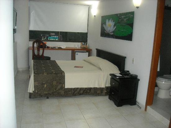 Hotel Plaza Rosa: Room