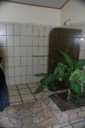 Arenal Manoa Hotel: shower half of the bathroom-yes plants are real!