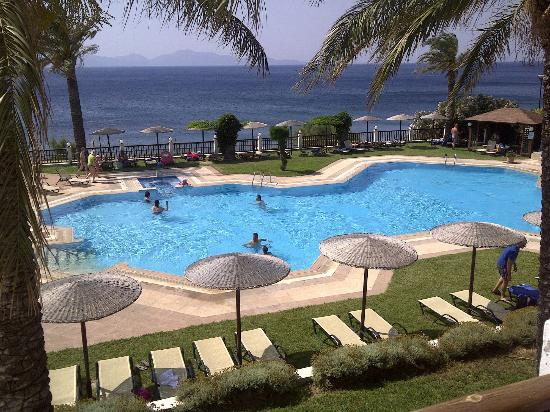 Dimitra Beach Hotel: Pool and view