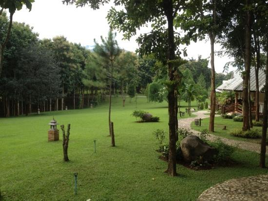 Chiangkham Luang Resort : park from the rooms