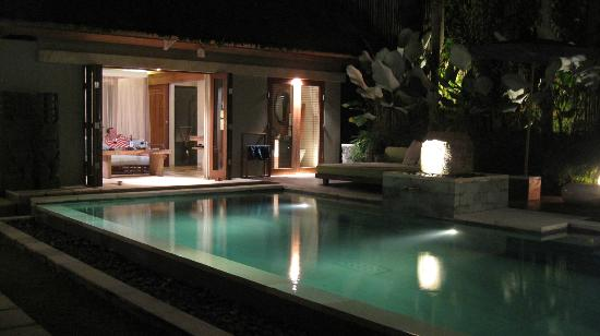 The Purist Villas and Spa : Garden Villa