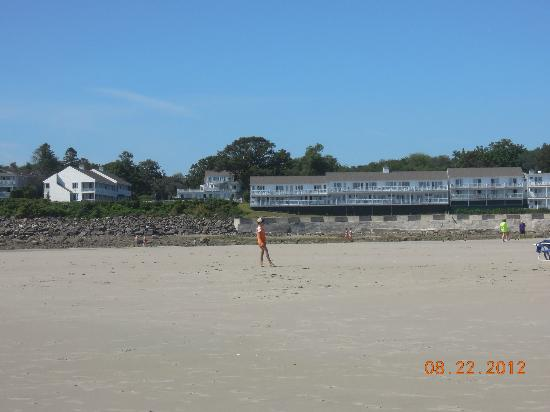 The Sparhawk Oceanfront Resort: Sparhawk as seen from Ogunquit Beach at low tide. Ireland house to left.  Barbara Deans in back.