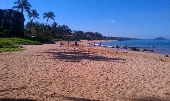 Days Inn Maui Oceanfront: The beach at the hotel... awesome!