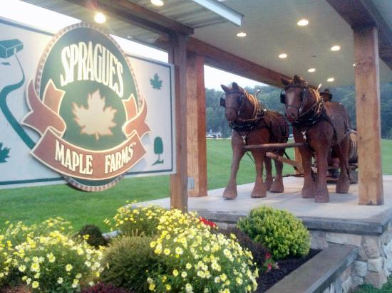Sprague's Maple Farm: Stop and look at the life size carving!