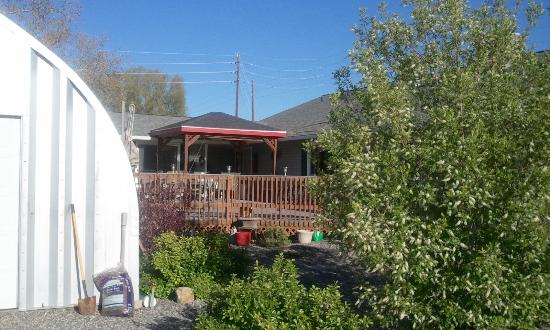Grand Junction Bed and Breakfast: Gazebo