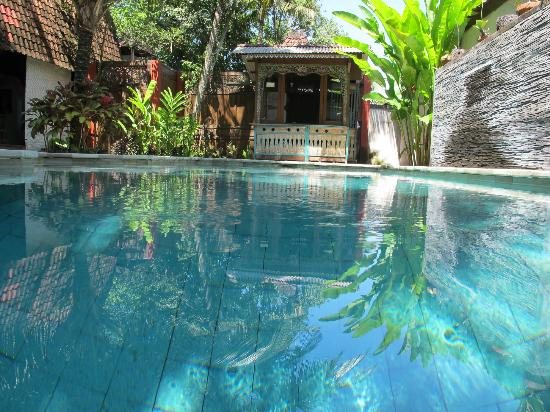 Desa Sanctuary, The Village: The Pool