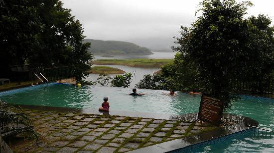 Swimming Pool Picture Of Wayanad Silverwoods Kalpetta Tripadvisor