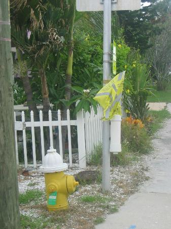 Madeira Bay Resort: Safety first.... the flag system used to cross the street. It works!!!!