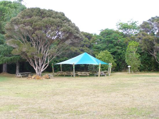 Aroha Island Ecocentre: BBQ area in campground