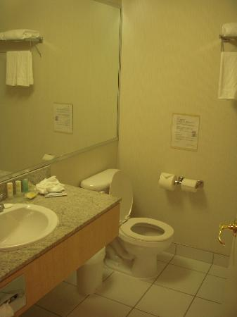 Quality Hotel Airport South: Bathroom