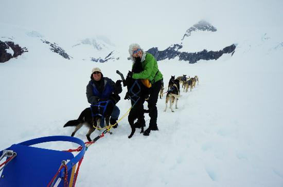 Alaska Icefield Expeditions: Getting to know the dogs