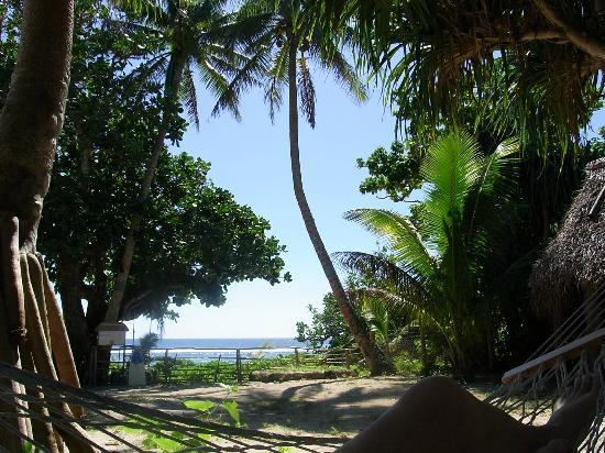 Heilala Holiday Lodge: View from the hammock