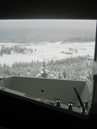 Sparkling Hill Resort:                   Predator Ridge View Room