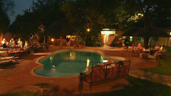 Livingstone Backpackers : Pool & Bar