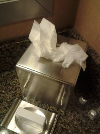 Doubletree Hotel San Diego Downtown: Kleenex was jammed into the box like this in my room when I checked in.
