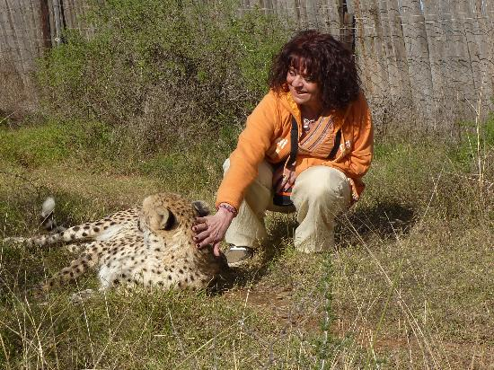 Daniell Cheetah Project: A GREAT EMOTION