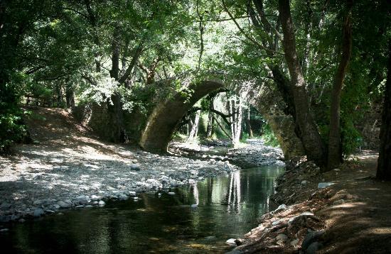 Arsorama Village Homes: Nearby Tzielefos Bridge