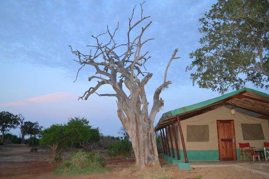 Sentrim Tsavo East : Le campement