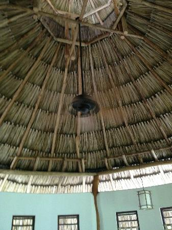 Merecumbe Hotel: Roof in our cabina
