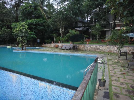 Pool At Resort Picture Of Wayanad Silverwoods Kalpetta Tripadvisor