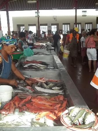 Mercado de Peixe: Una scena quotidiana