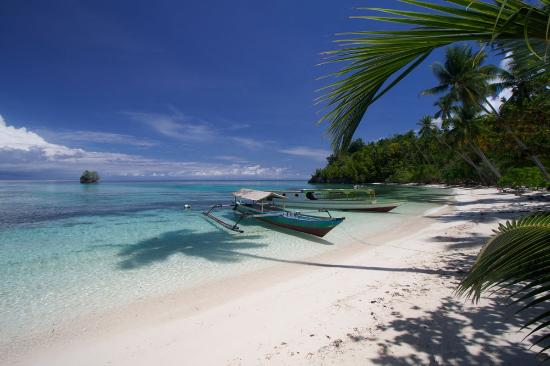 Togian Islands, Indonesien: Sifa cottage beach
