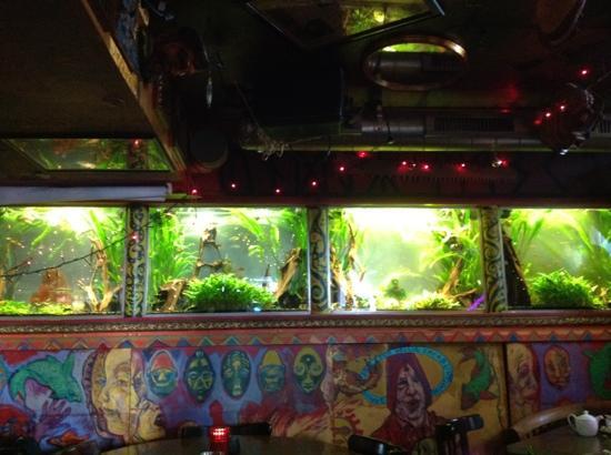 Under Masken: Wall with aquariums