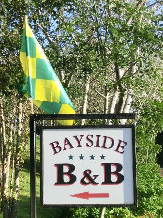Bayside B&B: echte Donegal Fans (hatten eben das Semifinale gewonnen)!