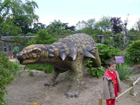 Chester Zoo Hotel Deals