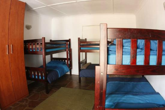 The Melville Palm Hostel: Bunks