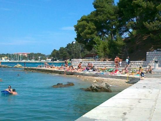 Hotel Padova: The beach