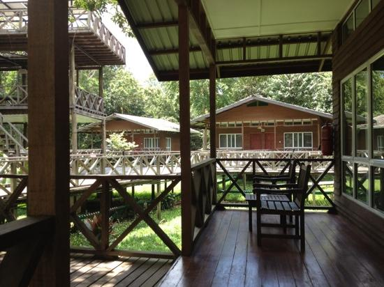 Borneo Nature Lodge: veranda