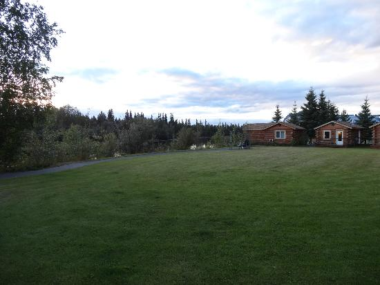 Pike's Waterfront Lodge: Cabin Lawn