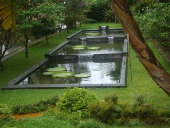Azorean Tours: relajante