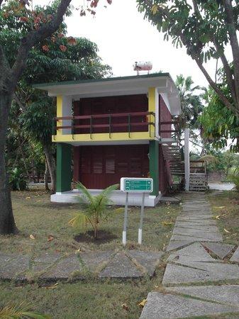 Islazul La Lupe: Notre chambre 5 au deuxième étage au 25 mars 2012.