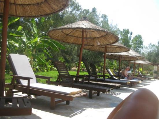 Odyssey Villas : Pool area
