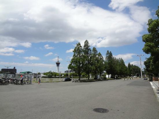 Flower Expo Memorial Park Tsurumi Ryokuchi: 広いです