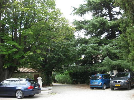 Hotel le Chalet Fleuri : the garden