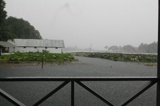 Sugar Cane Guest House 1 : Mentre piove...