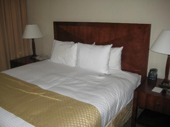 DoubleTree Suites by Hilton Hotel Philadelphia West: Bedroom
