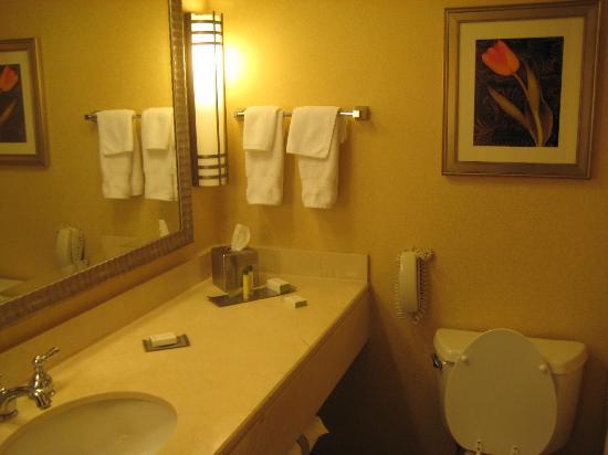 DoubleTree Suites by Hilton Hotel Philadelphia West照片