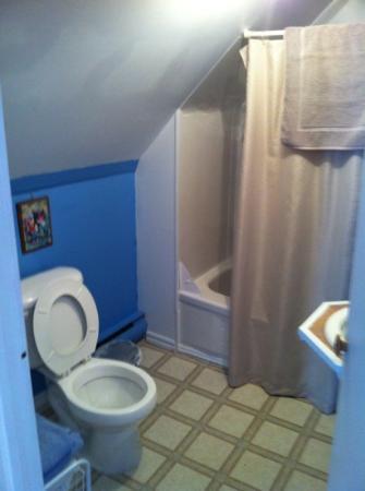 Gite la Roseraie : salle de bain complète