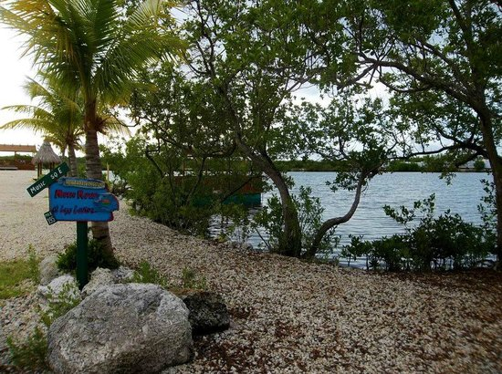 Lazy Lakes Rv Resort Updated 2018 Reviews Amp Photos